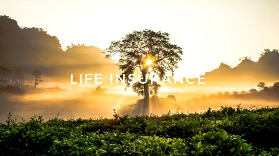The 3+1 Methods to Find Life Insurance Products in Malaysia