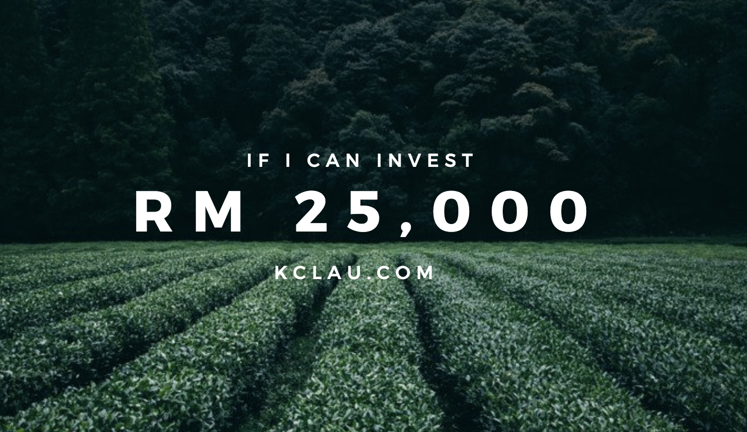 If I have RM 25,000 to Invest …